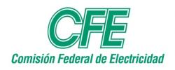 CFEinternational