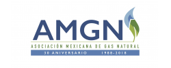 Asociación Mexicana de Gas Natural (AMGN)